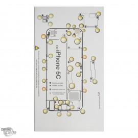 iScrews ™ iPhone 5C