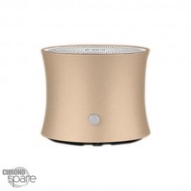 Enceinte Bluetooth EWA A104 - Or