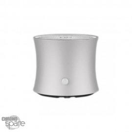 Enceinte Bluetooth EWA A104 - Gris anthracite