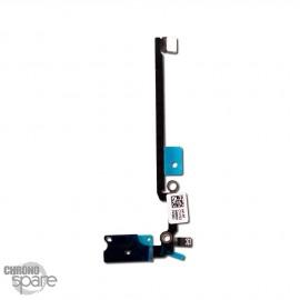 Nappe Haut-Parleur iPhone 8